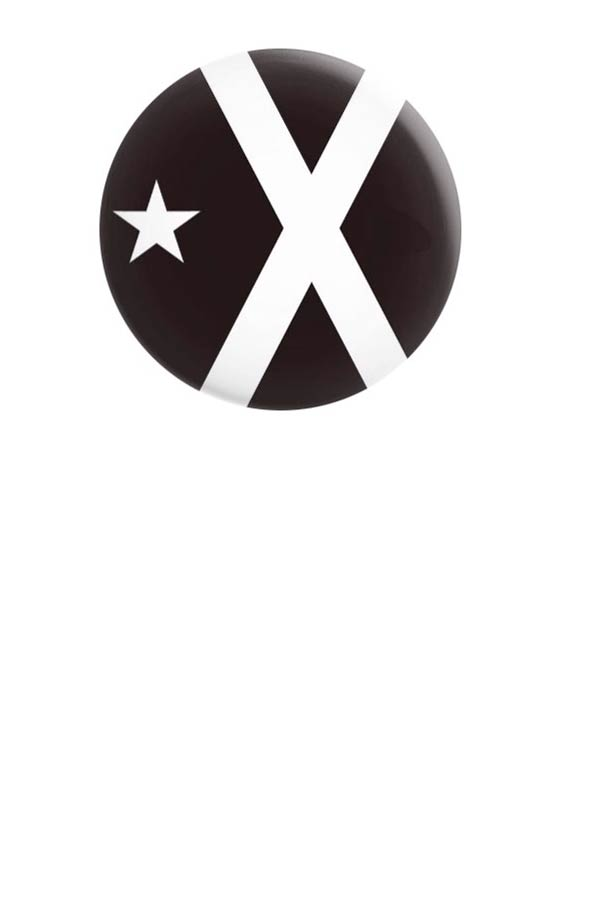 Black Flag Pin - diameter 32millimetre